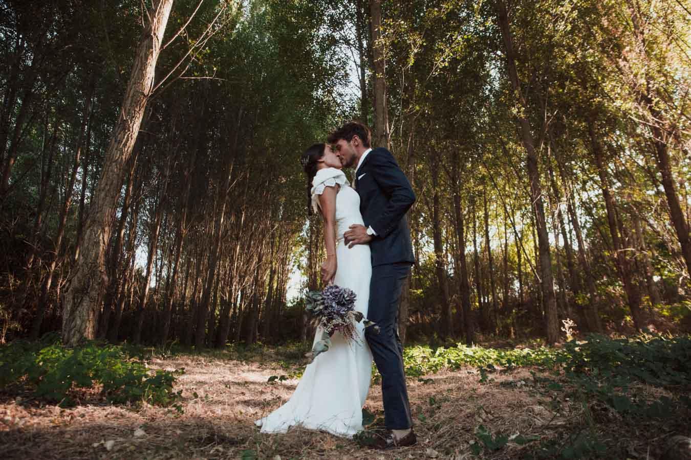 proceso bodas